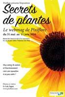 Exposition Secrets de Plantes