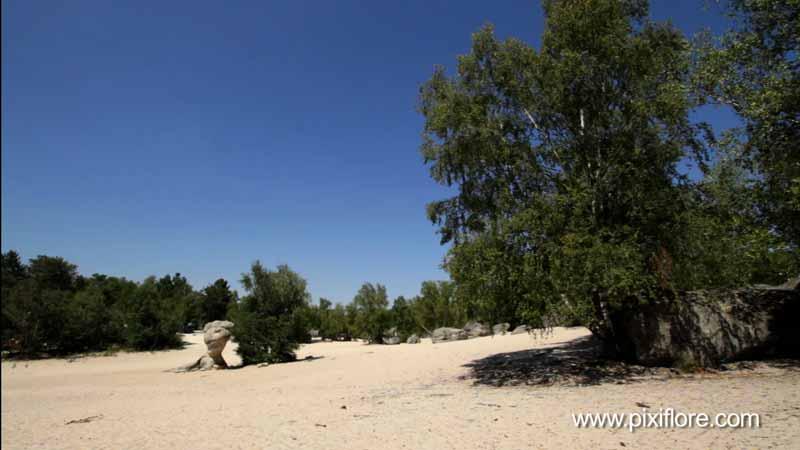 http://www.pixiflore.com/pages/lieux/les_trois_pignons/photo1.jpg